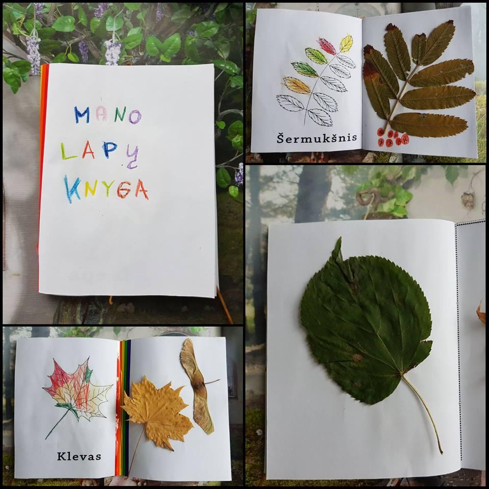 Lapų knyga