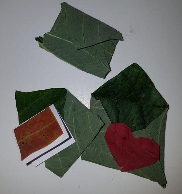 Vasaros laiškai