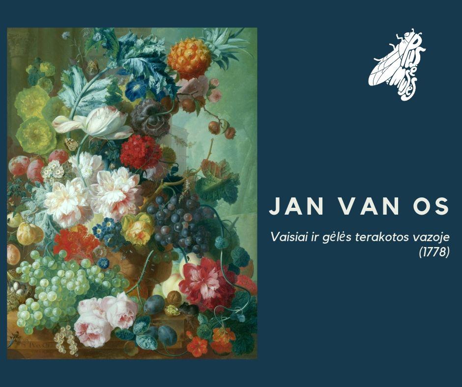 Pirmas paveikslas – JAN VAN OS Vaisiai ir gėlės terakotos vazoje