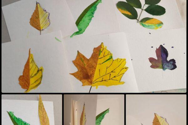 spalvotos lapų knygos